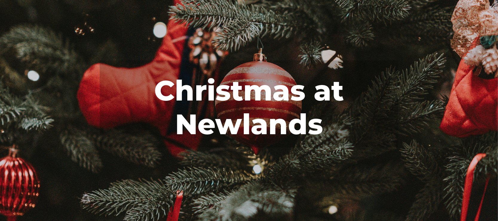 Christmas at Newlands
